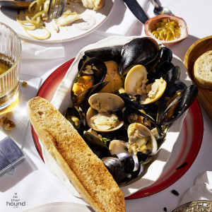 Steamed Blue Mussel and Clam in White Wine Cream Sauce